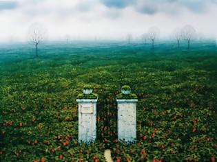 Φωτογραφία για Φραουλοχώραφα, μια καλλιέργεια αυτογνωσίας...