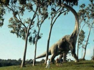 Φωτογραφία για Ο δεινόσαυρος που έτρωγε σαν γεράκι 76f0e8313e3