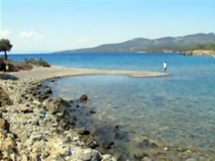 Φωτογραφία για ''Στο σφυρί'' καταπράσινο νησάκι στη Χαλκιδική
