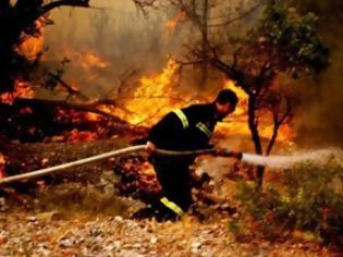 Φωτογραφία για Πάτρα: Ξύπνησαν μνήμες από την καταστροφική πυρκαγιά στα Σελλά - Συμπληρώθηκε ένας χρόνος απο τον πύρινο όλεθρo