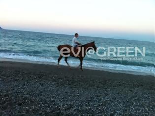 Φωτογραφία για Στόμιο: Το άλογο που έκανε μικρούς και μεγάλους να κολλήσουν!