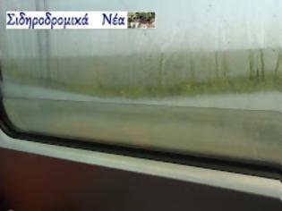 Φωτογραφία για «Ενυδρείο» σε παράθυρο Προαστιακού τρένου [video]