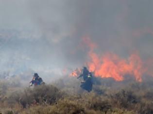 Φωτογραφία για Τεράστια η καταστροφή από την πυρκαγιά στο Πεδίο Βολής Γουβών - Δείτε φωτογραφίες
