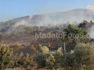Φωτογραφία για Μαρκόπουλο: Σε Ύφεση Η Φωτιά- Εντυπωσιακά Πλάνα Από Ρίψεις Νερού [Video]