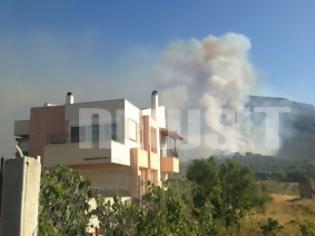 Φωτογραφία για Στάχτη και καμμένα σπίτια αφήνει πίσω της η πυρκαγιά στο Μαρκόπουλο - Τη νύχτα το μεγάλο στοίχημα της Πυροσβεστικής - Δείτε video