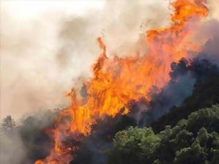 Φωτογραφία για Μεγάλος ο κίνδυνος φωτιάς το Σάββατο