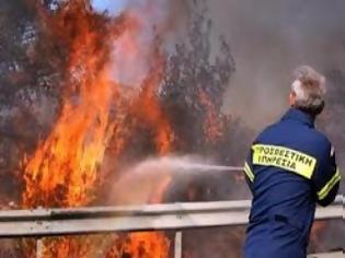Φωτογραφία για Πήγαν να σβήσουν τη φωτιά και βρήκαν χασίς