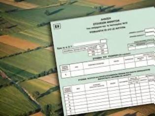 Φωτογραφία για Μήνυμα αναγνώστριας: Μερικά από τα προβλήματα της φορολόγησης των εκτός σχεδίου και αγροτεμαχίων