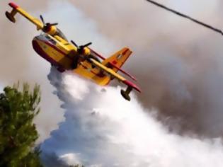 Φωτογραφία για Συναγερμός στη Φωκίδα - Μεγάλη φωτιά στο Σερνικάκι...