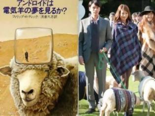 Φωτογραφία για ΔΕΙΤΕ: Το πρώτο ξενοδοχείο για… πρόβατα!