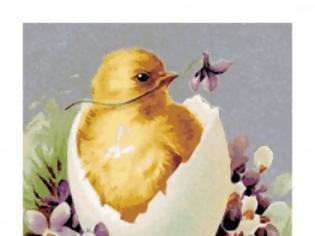 Φωτογραφία για Θα τσουγκρίσουμε αυγά ή γιαούρτια;