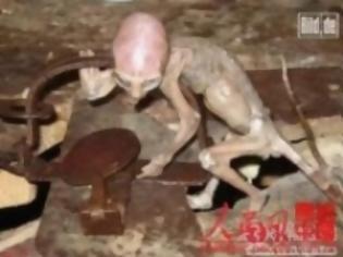 Φωτογραφία για Φωτογραφία Σοκ: Βρέθηκε εξωγήινο μωρό!