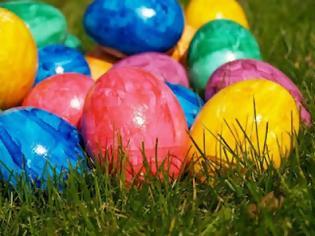 Φωτογραφία για Κότες γεννούν αυγά σε... διάφορα χρώματα!