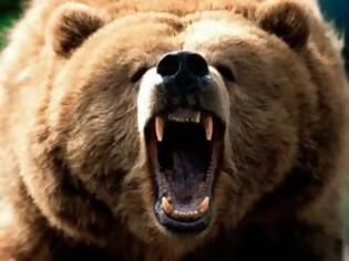 Φωτογραφία για Γεωργός νίκησε αρκούδα.Θα κάνει Ανάσταση ο άνθρωπος.