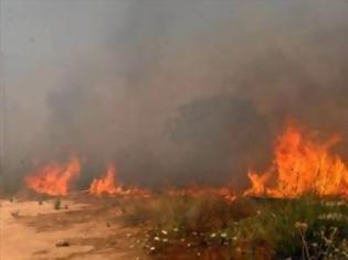 Φωτογραφία για Πυρκαγιά στο Ξαμμουδοχώρι Χανίων καίει και ελαιώνες