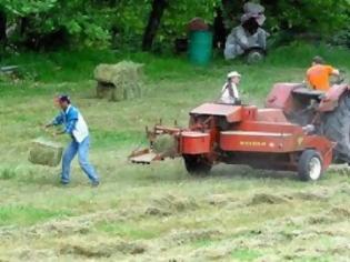 Φωτογραφία για Οι ¨Ελληνες δεν πάνε στα χωράφια και ας είναι άνεργοι