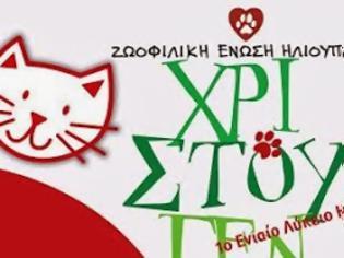 Φωτογραφία για Ζωοφιλική Ένωση Ηλιούπολης: Χριστουγεννιάτικο παζάρι