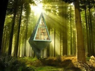 Φωτογραφία για Γυάλινα δεντρόσπιτα στο δάσος!