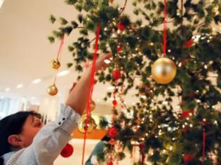 Φωτογραφία για Το «φιλόξενο» χριστουγεννιάτικο δέντρο