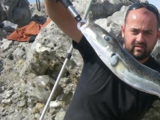 Φωτογραφία για Nαυτικοί έφαγαν αυτό το ψάρι και έπεσαν σε κώμα στην Ιεράπετρα Κρήτης -Προσοχή στον λαγοκέφαλο [εικόνα]