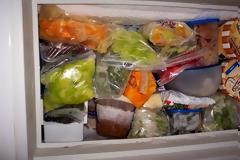 Μάθετε ποια τρόφιμα μπορείτε να έχετε στην κατάψυξη