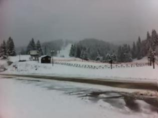 Φωτογραφία για Με χιόνι τα κούλουμα στα Ορεινά Τρικάλων
