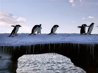 Φωτογραφία για Ενα μικρό κομμάτι πάγου απειλεί τον πλανήτη