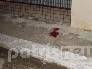 Φωτογραφία για Ηλεία: Νεκρός 35χρονος αστυνομικός από μαχαιριές στην Ανδραβίδα