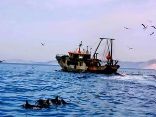 Φωτογραφία για 4760 - Παράνομοι αλιείς απειλούν με πυρκαγιές τους Αγιορείτες