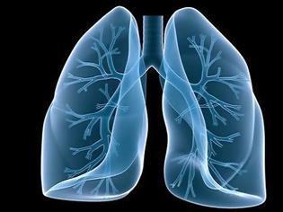 Φωτογραφία για Καπνίζεις; Μάθε τι πρέπει να τρως για να καθαρίζεις τους πνεύμονές σου!