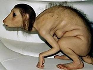 Φωτογραφία για Υβρίδια ζώων με ανθρωποειδή στα βρετανικά εργαστήρια - Εφιάλτης ή σωτηρία; [video]