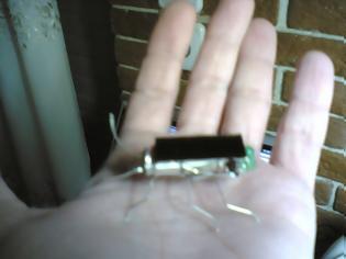 Φωτογραφία για Το ηλεκτρονικό σας... έντομο!