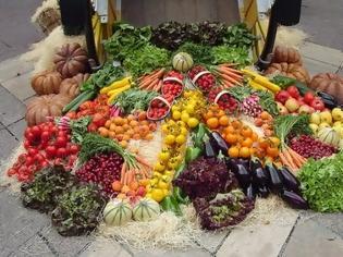 Φωτογραφία για Nέος κανονισμός προώθησης αγροτικών προϊόντων σε ευρωπαϊκή αγορά και τρίτες χώρες