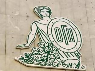Φωτογραφία για Βοήθημα 1.000 ευρώ από τον ΟΓΑ