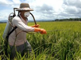 Φωτογραφία για Έλεγχοι για υπολείμματα φυτοφαρμάκων σε γεωργικά προϊόντα