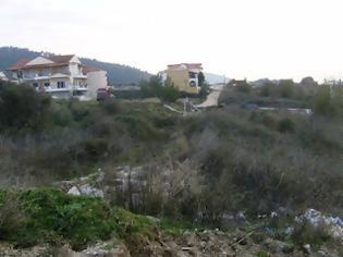 Φωτογραφία για Καθαρίστε την πυκνή βλάστηση από τα οικόπεδα