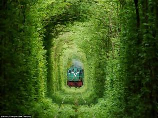 Φωτογραφία για ΔΕΙΤΕ: Το τούνελ της αγάπης