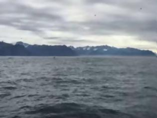 Φωτογραφία για Αλάσκα: Βιντεοσκοπούσε γλάρους, όταν... κόπηκε η ανάσα του με αυτό που είδε [video]