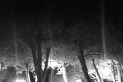 Τρόμο και αναστάτωση προκαλεί το «φάντασμα με το σεντόνι» στον δρόμο Γέρας – Πλωμαρίου