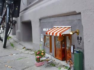 Φωτογραφία για Οι «βιτρίνες» και τα «μαγαζιά» των τρωκτικών στη Σουηδία [photos]