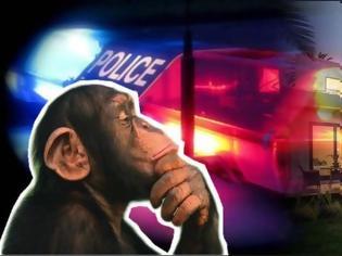 Φωτογραφία για Σκάνδαλο στα Νότια Προάστια: H ΕΛ.ΑΣ. επιτηρεί το σπίτι μαϊμού εκδότη – δημοσιογράφου!