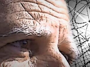 Φωτογραφία για Στα άδυτα των Κεντρικών φυλακών – Η ζωή και το 24ωρο ενός κατάδικου