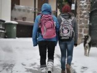 Φωτογραφία για Κλειστά τα σχολεία στη Δράμα την Πέμπτη