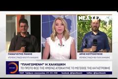Χαλκιδική: Αγώνας δρόμου των φορέων για επούλωση των πληγών