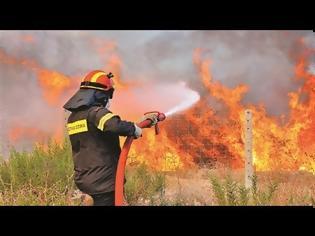 Φωτογραφία για Εύβοια: Συνεχίζεται για τρίτη ημέρα η μάχη με τις φλόγες