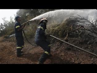 Φωτογραφία για Οριοθετημένη η πυρκαγιά στην Εύβοια - Επί ποδός ισχυρές δυνάμεις πυρόσβεσης