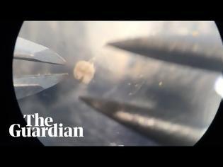 Φωτογραφία για Δημιουργήθηκαν τα πρώτα ζωντανά ρομπότ! (video)