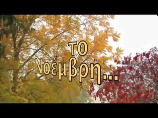 Φωτογραφία για NOVEMBRE-GIUSY FERRERI -- -- Lyrics with greek subs translated by ♥ FIORINA ♥